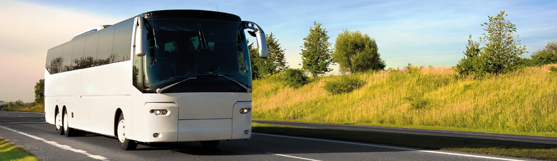 die Dieselöl-Verbrauchssteuer für den Straßentransport von Personen erstatten